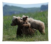 Grizzly  Mother And A Cub In Katmai National Park Tapestry