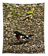 Grosbeak With Quizzical Look Tapestry