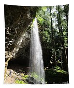 Grotto Falls Perspective Tapestry