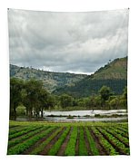 Guatemalan Nursery And Lake Tapestry