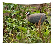 Guineafowl 3 Tapestry