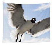 Gull In Flight Tapestry