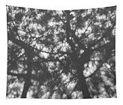 Gunmetal Grey Shadows -  Tapestry