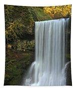 Gushing At Silver Falls Tapestry