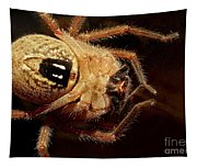 Hairy Spider Tapestry