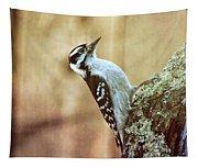 Hairy Woodpecker Tapestry