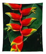 Hanging Heliconia Tapestry