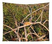 Hanging Iguana Tapestry