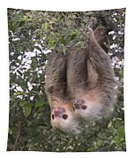 Hanging Out Tapestry
