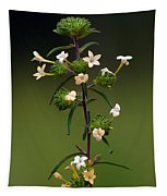Happy Flowers Tapestry