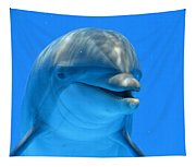 Happy Smiling Dolphin Tapestry