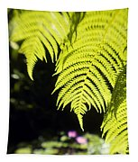 Hapuu Ferns Tapestry