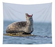 Harbour Seal Tapestry