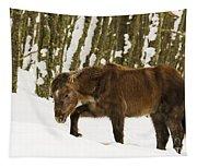 Hardships Of Winter Tapestry