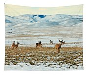 Harem Tapestry