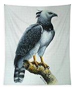 Harpy Eagle Tapestry