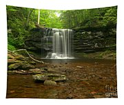 Harrison Wrights Falls In The Forest Tapestry