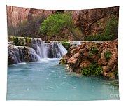 Havasu Creek Grand Canyon 15 Tapestry