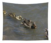 Having Your Duckies In A Row  Tapestry
