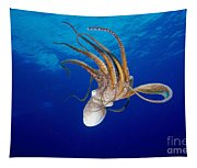 Hawaii, Day Octopus Tapestry