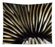Hawaii Mushroom Coral Tapestry