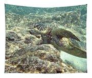 Hawaiian Green Turtle Tapestry
