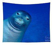 Hawaiian Monk Seal Tapestry