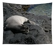 Hawaiian Monk Seal Ilio Holo I Ka Uana Tapestry
