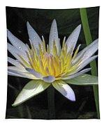 Hawaiian Water Lily 05 - Kauai, Hawaii Tapestry