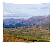 Hawk Soaring Over Guanella Pass In The Arapahoe National Forest Tapestry