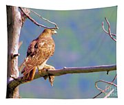 Hawk With Prey Tapestry
