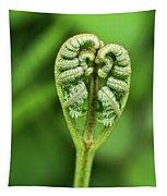 Heart Of A Fern Tapestry