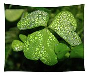Heart Shaped With Water Drops Tapestry