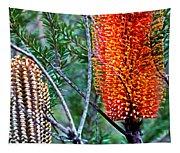 Heath Banksia From Fairfax Walk Tapestry