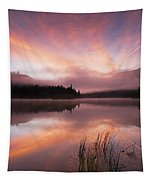 Heavenly Skies Tapestry