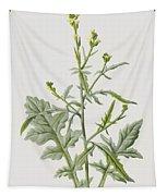 Hedge Mustard Tapestry