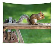 Hello Are You Gonna Eat All That? Chipmunk And Squirrel Tapestry
