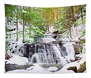 Hells Hollow Falls 1 Tapestry