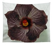 Hibiscus 5 Tapestry