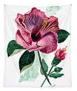 Hibiscus Dusky Rose Tapestry