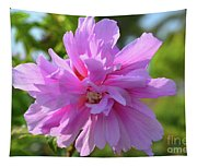 Hibiscus Syriacus Tapestry