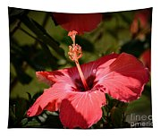 Hibiscus  Tapestry
