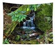 Hidden Treasures Tapestry
