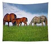 High Browsers Tapestry