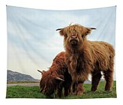 Highland Cow Calves Tapestry