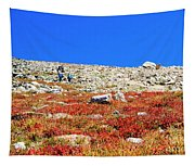 Hikers And Autumn Tundra On Mount Yale Colorado Tapestry