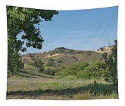 Hills In Peters Canyon Tapestry