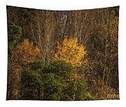 Hillside Autumn Tapestry