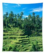 Hillside In Indonesia Tapestry