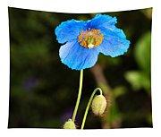 Himalayan Blue Poppy Tapestry